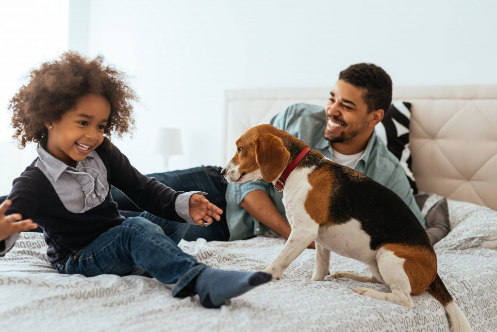 mayo-clinic-q-and-a:-children-with-animal-allergies-can-live-comfortably-with-pets
