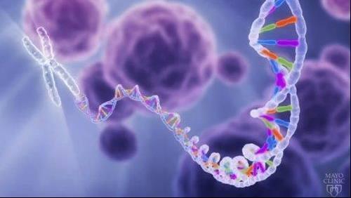 estudio-de-mayo-clinic-descubre-que-1-de-cada-8-pacientes-con-cancer-tiene-mutaciones-geneticas-heredadas