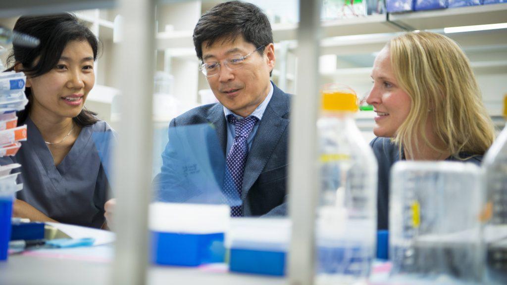 modelos-tridimensionales-avanzan-estudios-sobre-enfermedad-de-alzheimer-en-mayo-clinic
