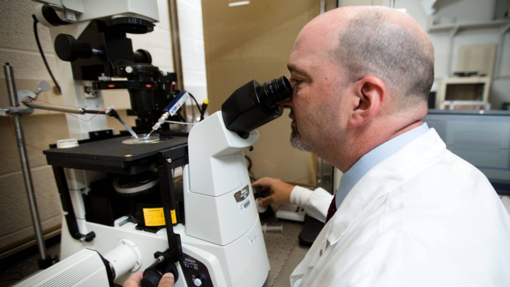 delivering-innovative-stem-cell-therapy-to-slow-vision-loss