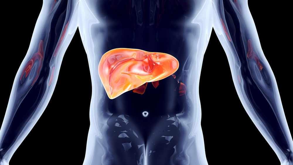 investigadores-atacan-tumores-hepaticos-con-bombas-radioactivas-de-precision