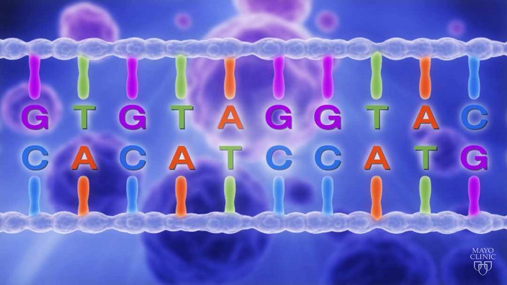 mayo-clinic-q-and-a:-genetic-abnormalities-and-cancer-risk