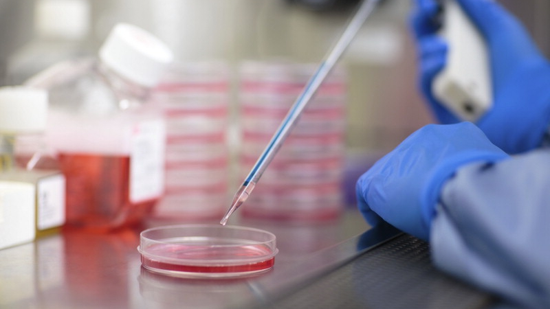 primera-terapia-genetica-con-metodo-hibrido-es-inicialmente-prometedora-para-tratamiento-del-sindrome-del-qt-largo