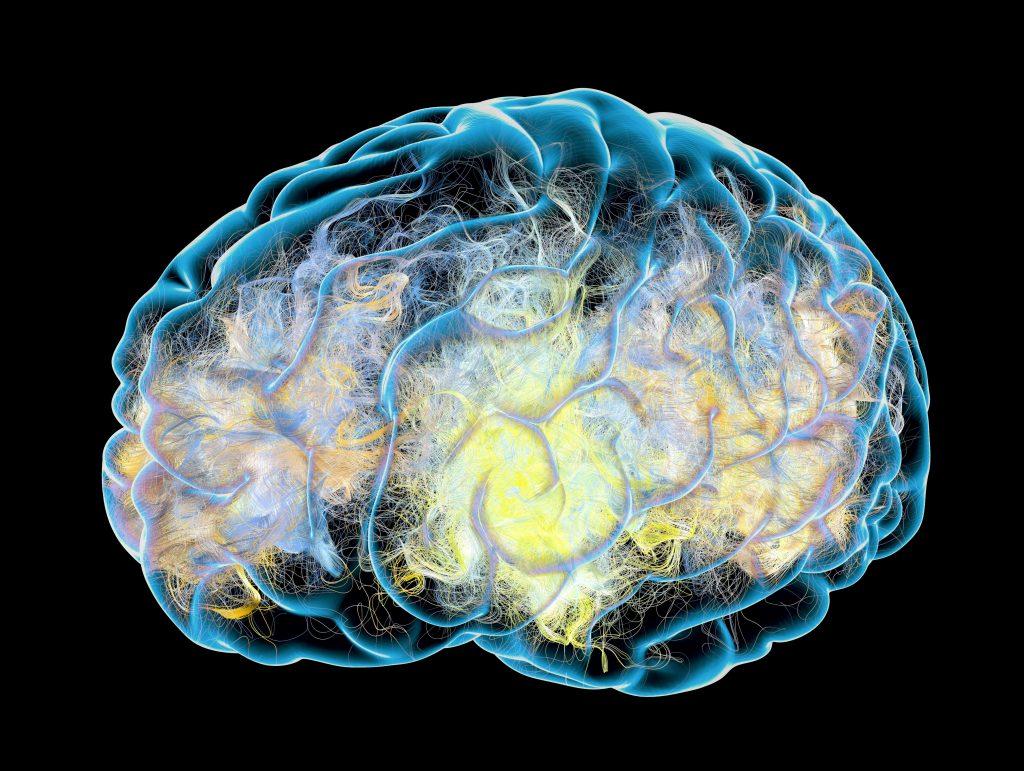 consumer-health:-what-is-encephalitis?