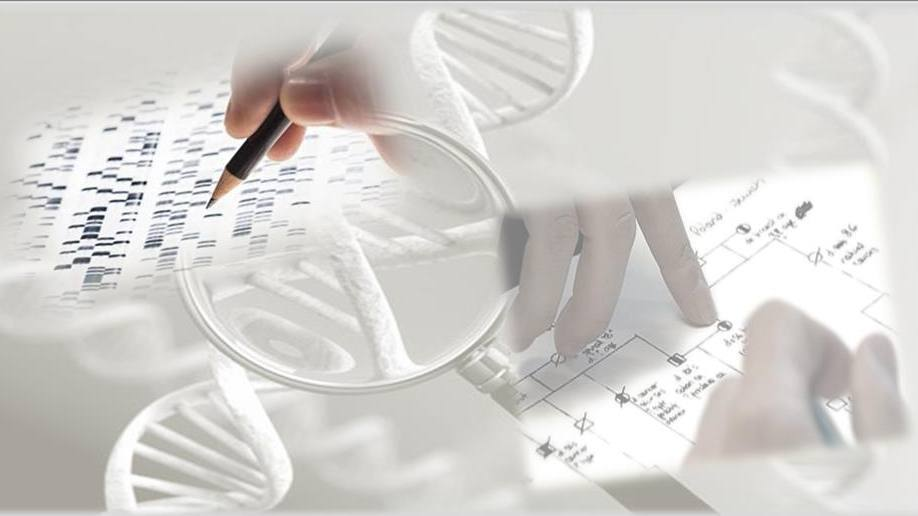 mayo-clinic-researchers-develop-test-to-measure-effect-of-breast-cancer-gene-variants